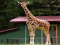 leo-zoological-conservation-center-zoo-ct