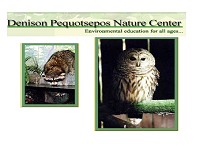 denison-pequotsepos-nature-center-zoos-ct