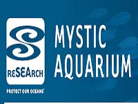 mystic-aquarium-road-trip-ct