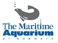 the-maritime-aquarium-at-norwalk-zoos-ct
