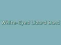 White-Eyed Lizard Band Musical Entertainers in CT
