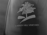 cassidy-hill-vineyard-vineyard-ct