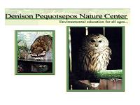 denison-pequotsepos-nature-center-zoos-ct