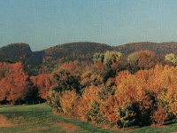sleeping-giant-state-park-road-trips-ct
